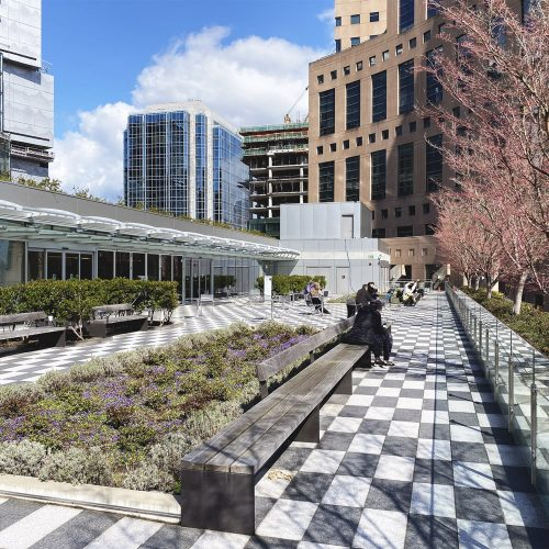 Vancouver Public Library Central Rooftop, 1995/ 2018