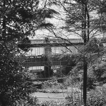 Taylor House, 1983